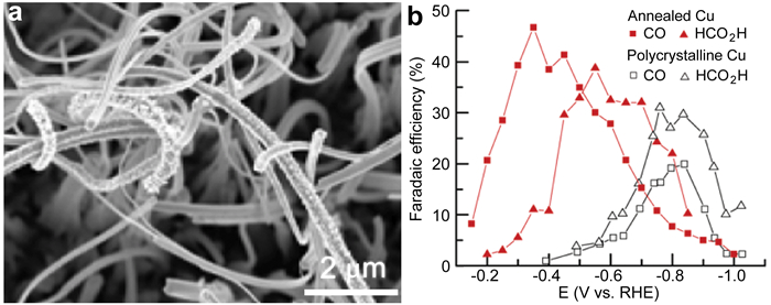 Recent progress on electrochemical reduction of carbon dioxide fig 5 a sem image of a polycrystalline cu foil annealed at 500 for 12 h after co2 reduction electrocatalysis at 05 v vs rhe fandeluxe Image collections