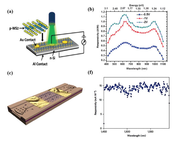 Photodetectors Based on Two-Dimensional Materials and Their