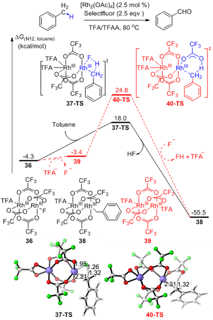 Theoretical Advances of Transition Metals Mediated C―H Bonds